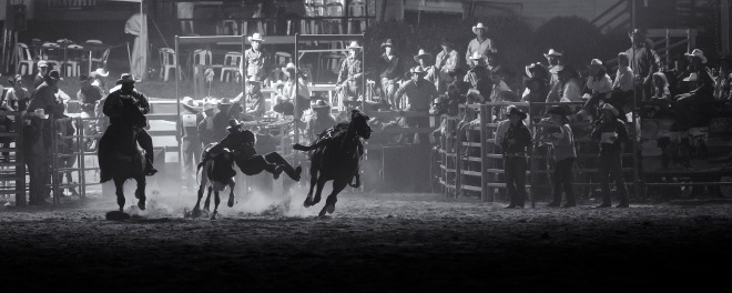 Night Rodeo Steer Wrestling