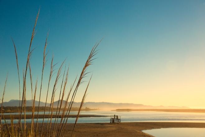 20140928_West Coast-229 blog