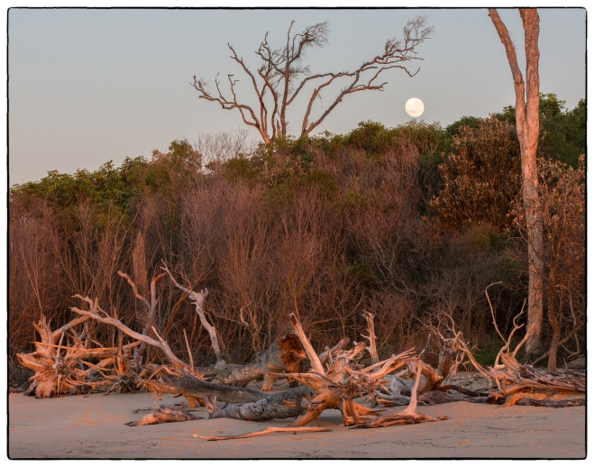 20130921_Bribie Island-39
